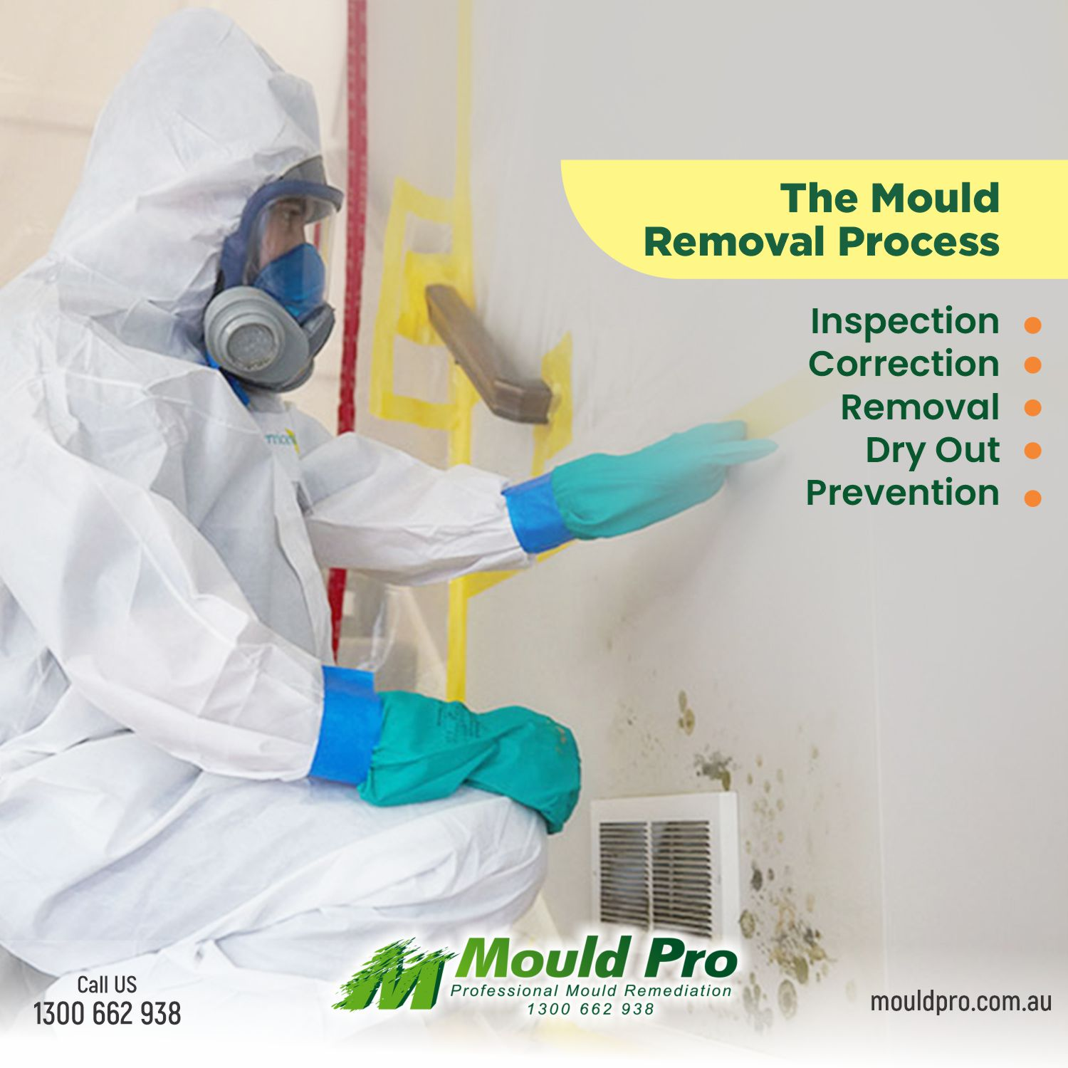 Our Mould removal Process